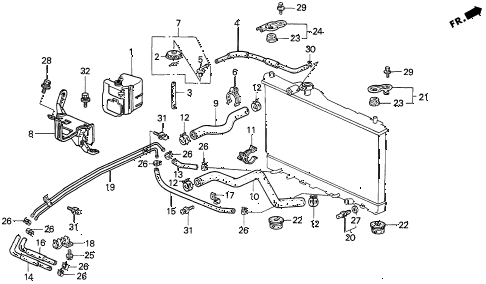 1997 TL BAS3.2 4 DOOR 4AT RADIATOR HOSE (V6) diagram