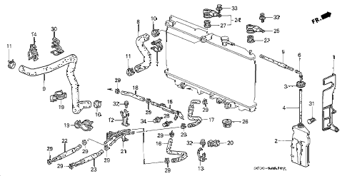 2001 prelude BASE 2 DOOR 5MT RADIATOR HOSE diagram